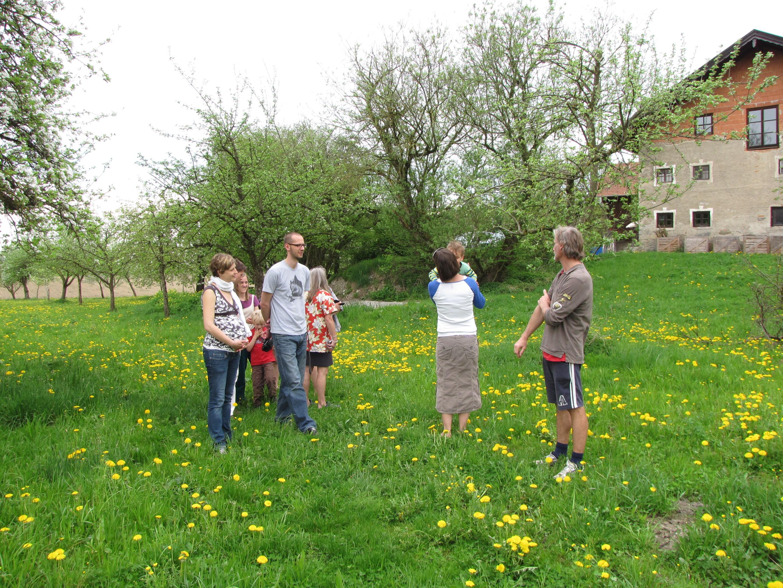 die Besuchergruppe im Garten